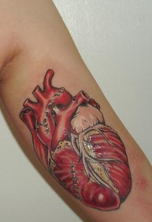 A Series of Anatomical Tattoos: anatomy_tattoos_35_20120628_1066756321.png