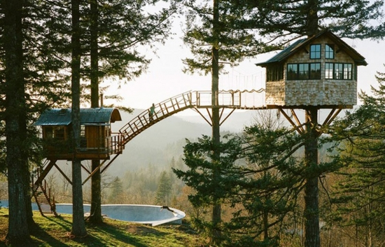 Treehouse & Skate Bowl Living in the Woods by Foster Huntington