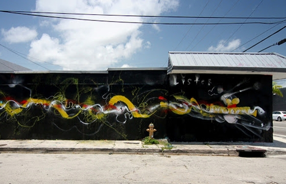New murals from Anthony Lister in Miami