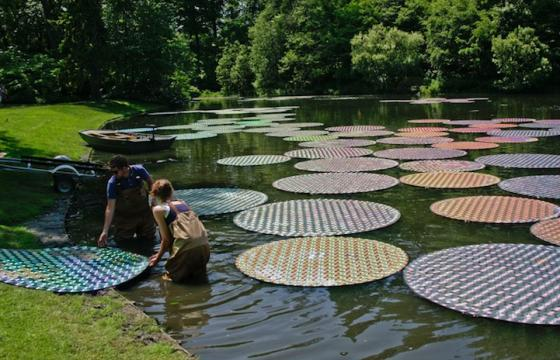Recycled CDs Make Waterlilies