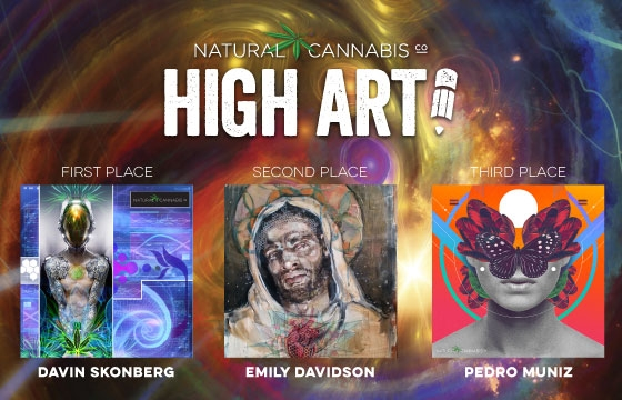 Natural Cannabis Company's High Art challenge: The Winners