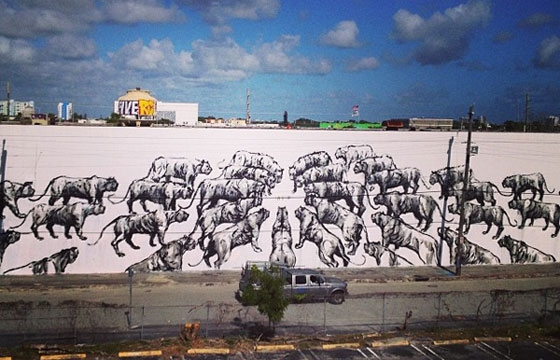 Two new walls by Franco Fasoli aka Jaz