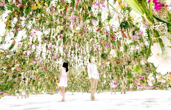 The Floating Flower Garden by teamLab